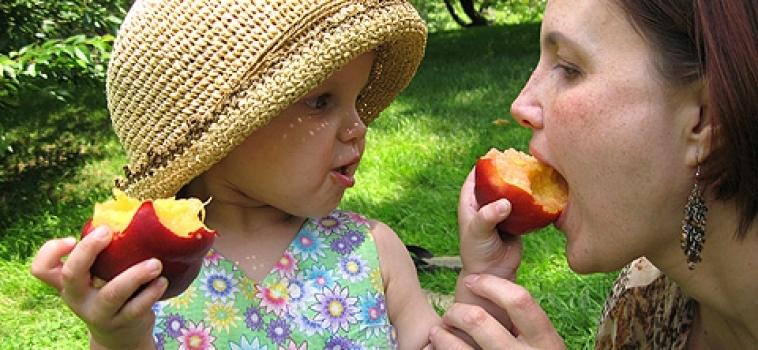 Maus hábitos alimentares começam no primeiro ano de vida, diz estudo