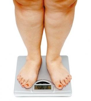 Um novo estudo da neurociência lança luz sobre as bases biológicas da obesidade