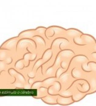 Inteligência e exercícios