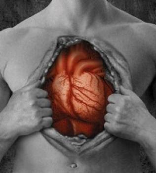 Estudo Revela que Obesidade Altera Estrutura do Coração